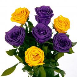 Вечные розы Florich